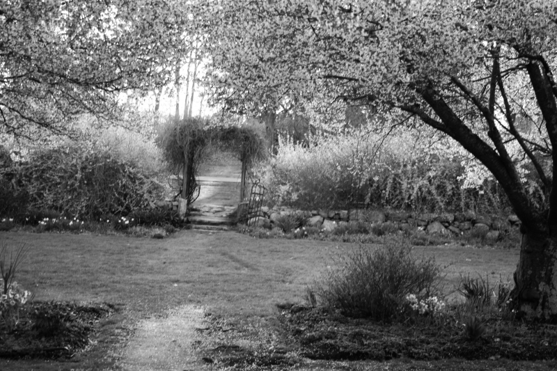2014-05-01, NJ Botanical Gardens  012, B&W