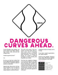 Dangerous Curves Ahead_1
