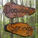 Welcome to Dogwood Springs (2003)